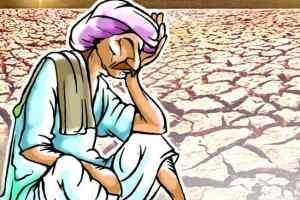 Raebareli local news : किसानों को हाथ लगी मायूसी
